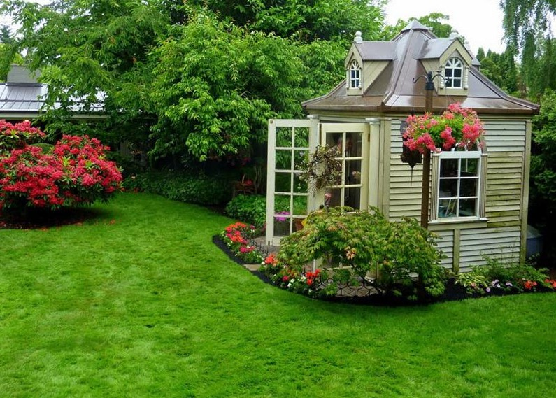beautiful backyard with shed