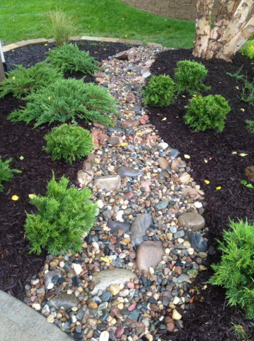 Interesting rock decoration with shrubs