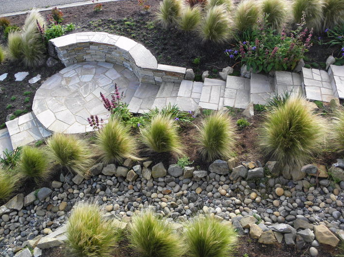 Rock stairs with shrubs
