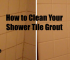 Clean Grout in Shower