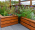 Elevated Garden Beds