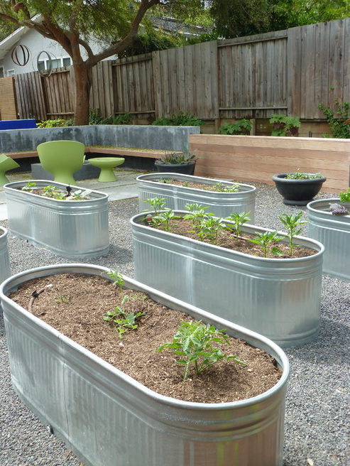 Galvanized Trough Garden