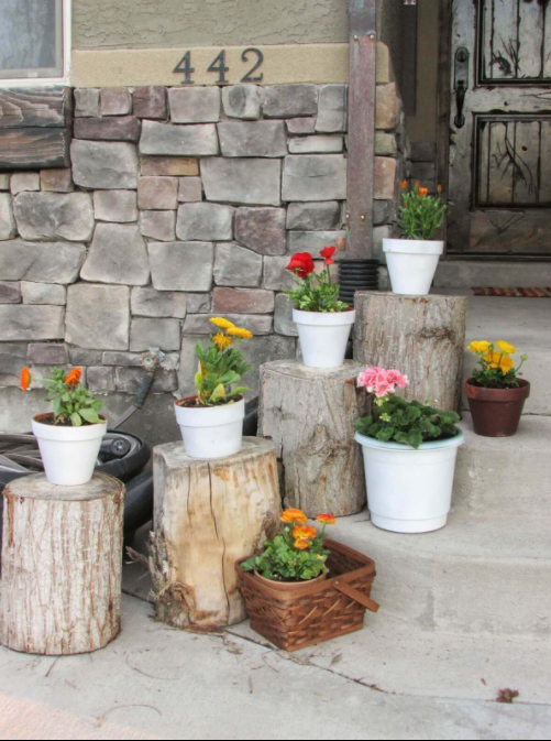 Plant Pots Set on Rustic Stumps