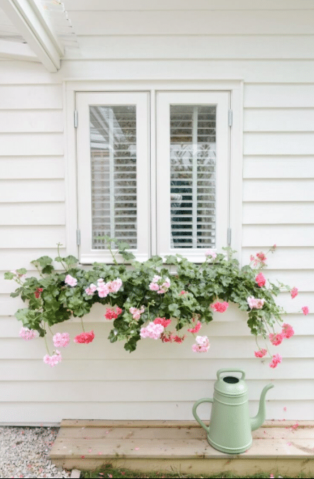 Subtle White Window Box With Cascading Flowers