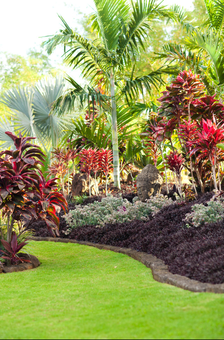 25+ Best Tropical Garden Design Ideas - Home and Gardens on Tropical Patio Ideas id=13130