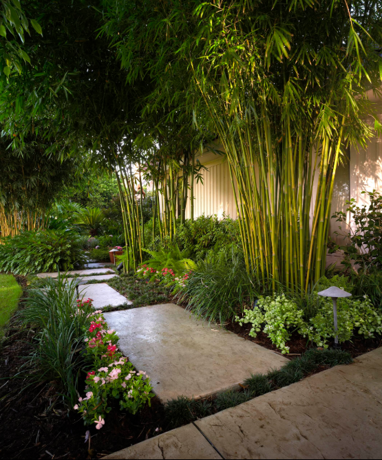 Tropical Garden Design Ideas 4