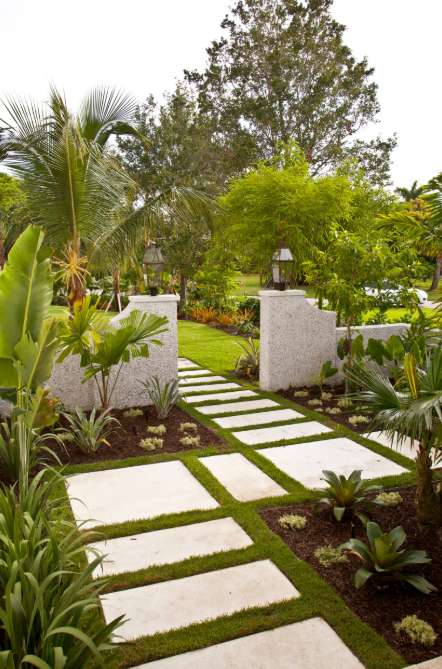 Tropical Garden Design Ideas 5