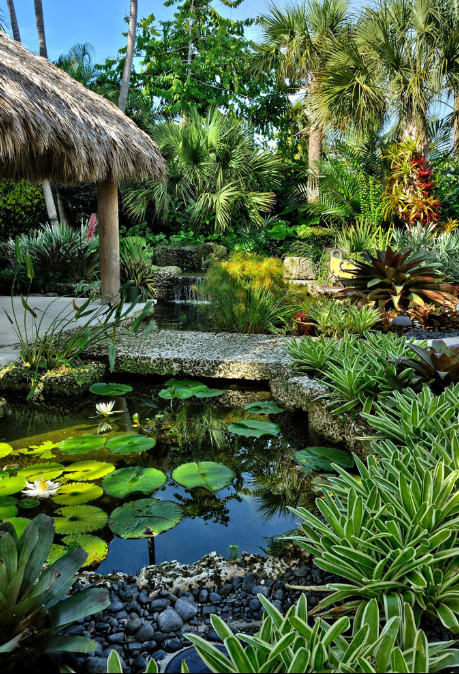 Tropical Garden Design Ideas 6