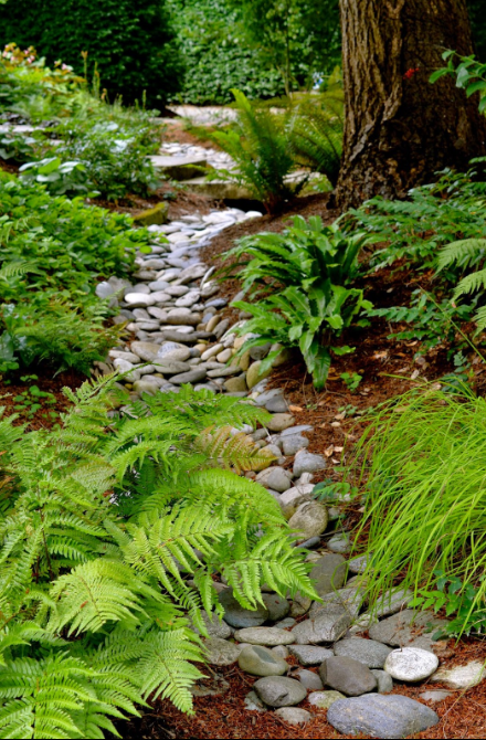 dry river bed landscaping 1