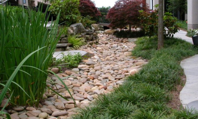 75 Dry Creek Bed Landscaping Ideas For