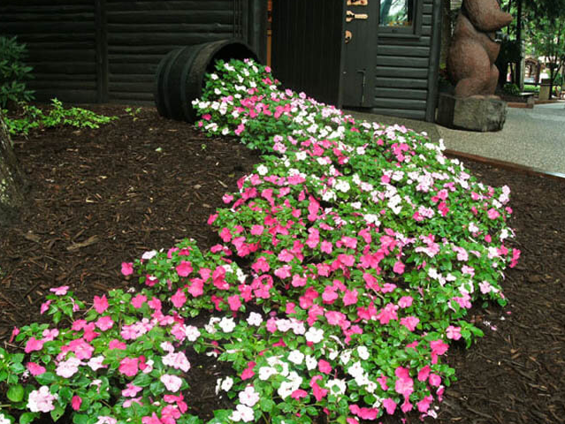 Pink and White Spilled Flower Pot Idea