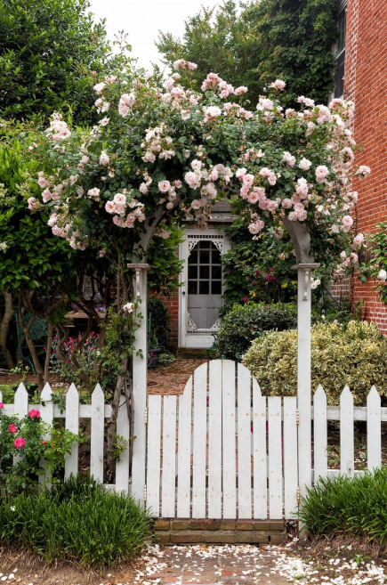 Rose Arbor - flower garden gate ideas