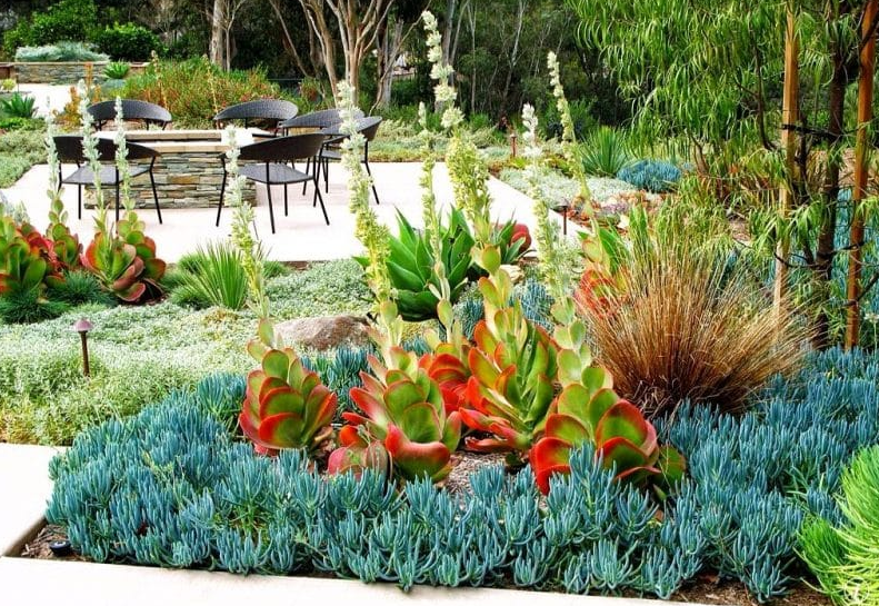 garden design ideas - Around the Firepit