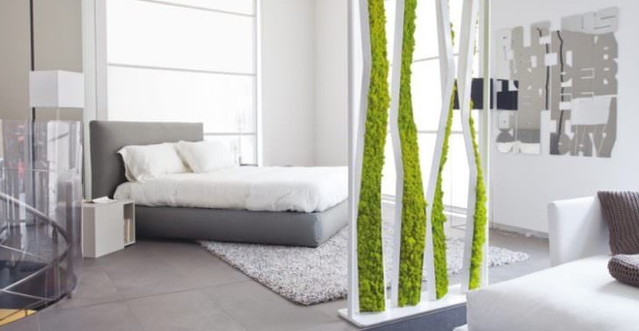 Indoor Moss Decorative Ideas 10