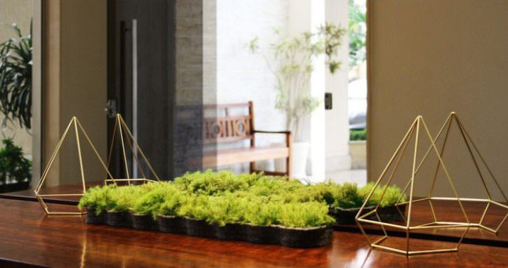 Indoor Moss Decorative Ideas 12