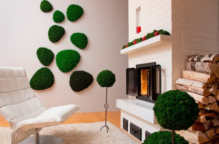 Indoor Moss Decorative Ideas 3