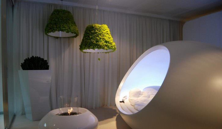 Indoor Moss Decorative Ideas 5