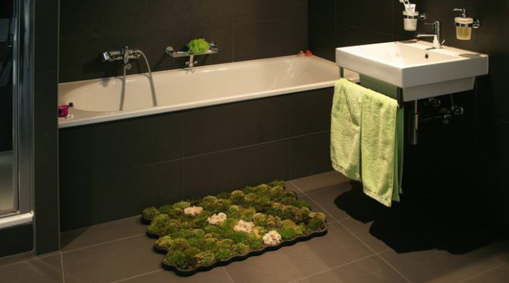 Indoor Moss Decorative Ideas 8